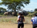 SummitsAfrica_biking_elephants