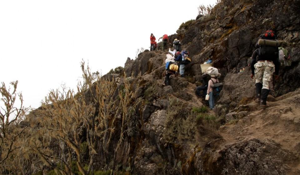 Kilimandscharo Besteigung Machame